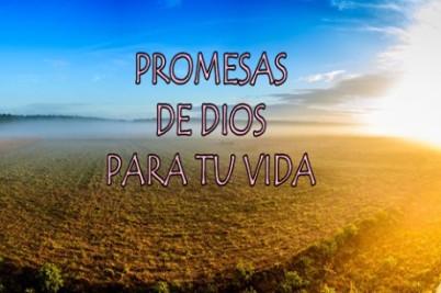 promesas-de-dios-5-1-s-307x512